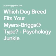 Which Dog Breed Fits Your Myers-Briggs®️️ Type? - Psychology Junkie
