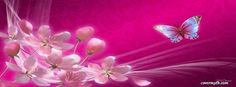 Pink  Facebook Cover