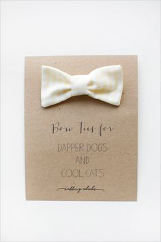 Dog And Cat Bow Ties + Baby Bib And One Piece Bow Ties