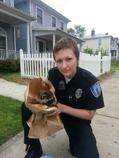 """Police officers get called to all types of situations. Most of the time, they are serious and critical incidents. This was not one of those situations. First Precinct Officer Kelly Morley was recently called to assist with a pair of baby raccoons who were trapped in a vehicle."" Source: RVA Police (May 2013)"