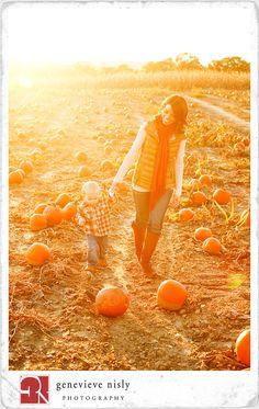 a pumpkin patch, love it