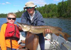Pike – Locations & Tackle Pike Fishing, Fishing Tips, Habitats, Spring