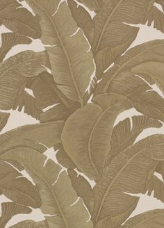 Teide wallpaper from Quod - 258/05 - Oro