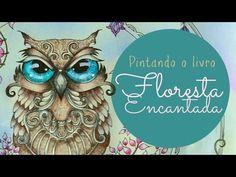 Livros de Colorir - Floresta Encantada - Olho da Coruja - YouTube