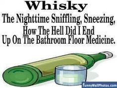 Whiskey The Nighttime Sniffling, Sneezing, How the Hell Did I End up on the Bathroom Floor cold flu Medicine Lol, Whiskey Girl, Rye Whiskey, Alcohol Humor, I Love To Laugh, Swagg, Night Time, I Laughed, Laughter