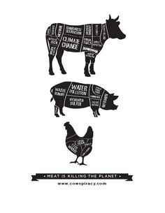 meat is killing the planet #vegan #truth