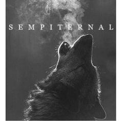 #Sempiternal #bmth