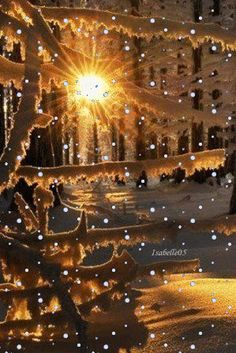 Winter sun. Snowing GIF. Send beautiful GIF message to loved ones. Tap to see more beautiful animated GIF as Greeting cards & messages for Facebook Messenger and Emails. @mobile9 #gif