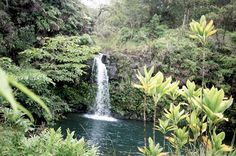 Maui - 10 Tips for Driving the Hana Highway | Travel News from Fodor's Travel Guides