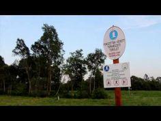 A Kis Balaton élővilága - YouTube