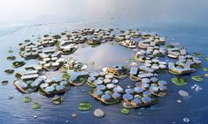 Seasteading – a vanity project for the rich or the future of humanity? | Environment | The Guardian Sea Level Rise, Floating House, The Locals, 3d Printing, Environment, Climate Change, Projects, Vanity, Future