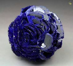 Stunning Azurite rosette from Poteryaevskoe Mine Western-Siberian Region Russia Fast Crazy Nature Deals. Minerals And Gemstones, Rocks And Minerals, Rock Collection, Beautiful Rocks, Mineral Stone, Vanitas, Rocks And Gems, Stones And Crystals, Gem Stones