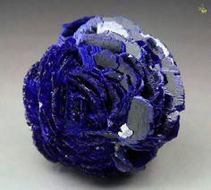 Stunning Azurite rosette from Poteryaevskoe Mine Western-Siberian Region Russia Fast Crazy Nature Deals.