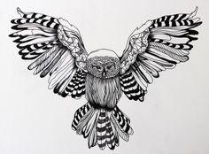 Owl - done with black ink liner pen