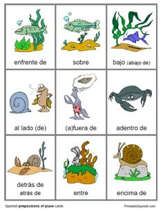 Printable Spanish FREEBIE of the Day: Prepositions of Place cards from PrintableSpanish.com