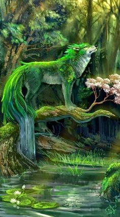 wolf spirit if the forist