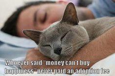 Adoption = Love