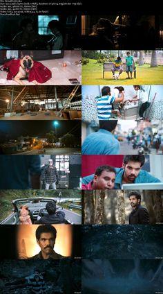 Screen Shot Of Naaigal Jaakirathai 2014 Dual Audio 720p HDRip [Hindi - Tamil] ESubs Resumeable Single Free Download Links Watch Online Free At Downloadhub.Net