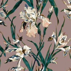The iris takes centre stage in the 'Eteris' wallpaper print, where a delicate mauve background offsets the flower's painterly tones, bringing the English garden into the interior. Our wallpaper is made using PVC-free, eco-friendly materials and promises m Luxury Wallpaper, Home Wallpaper, Watch Wallpaper, Arabian Beauty, Paper Light, Tropical, Hippie Home Decor, Natural Home Decor, Decorating Small Spaces