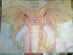 elefante de la India .. lindoooooooooooooo!!
