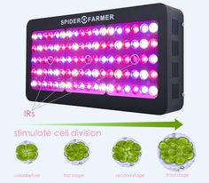 Spider Farmer 450w dimmable led grow light hydroponics growing indoor for Medical plants, two dimmer, good planting effect, special good for clone!