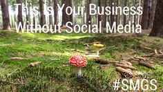 This Is Your Business Without Social Media. Business News, Social Media Marketing, Twitter, Nature, Mushrooms, Facebook, Health, Tips, Blogging