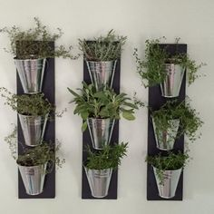 Indoor Wall Planter out of stock until December 23 door HomeOniship