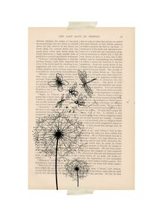 cyber monday dictionary art vintage butterfly DANDELION floral print - vintage art book page print - dandelion flower blowing in the wind Book Page Art, Book Pages, Book Art, Diy Collage, Newspaper Art, Newspaper Dress, Arte Van Gogh, Old Book Crafts, Dandelion Art