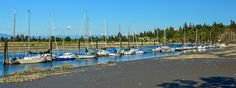 https://flic.kr/p/K3Xawz | Elgin Heritage Park & Ward's Public Marina | 13723 Crescent Road,  South Surrey, BC Canada  WARD'S PUBLIC MARINA - is a small civic marina a few miles up the Nicomekl River from Crescent Beach in Surrey, British Columbia, Canada.  It started as a farm, and became a marina after WWII when the Ward family added a couple of sections of float to their dock so friends could tie up there also, and gradually expanded from there.  In 1985 the City of Surrey purchased…