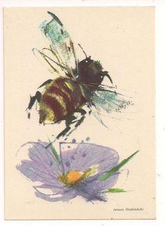 Illustrations by Janusz Grabianski and Joanna Zimowska-Kwak, 1989