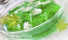 Gelatina detox de ágar-ágar é aliada na eliminação de gordura