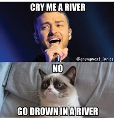 Grumpy Cat sings Cry Me A River by Justin Timberlake - Grumpy Cat si . - Grumpy Cat sings Cry Me A River by Justin Timberlake – Grumpy Cat sings Cry Me A River - Grumpy Cat Quotes, Funny Grumpy Cat Memes, Funny Animal Jokes, Cat Jokes, Cute Funny Animals, Funny Cats, Angry Cat Memes, Funniest Animals, Animal Humor