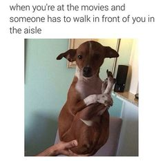 This always happens at the movies: | 27 Pictures That Are True For Absolutely No Reason
