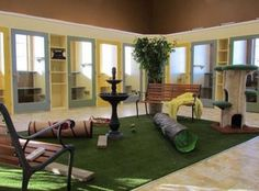 Cat Play Room Plans Cat Products, Cat Toys, Cat Furniture, And Cat Play Rooms, Dog Rooms, Animal Room, Cat Kennel, Cat Hotel, Cat House Diy, Pet Boarding, Pet Resort, Cat Enclosure