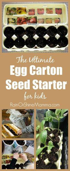egg carton seed starter craft for kids - garden craft for kids - spring craft - acraftylife.com #preschool #craftsforkids #crafts #kidscraft