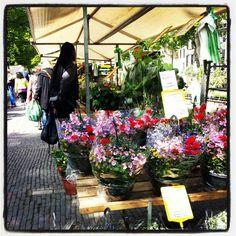 Flowers flowers flowers..@Utrechtmarket...lov'it!!