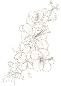 outline tattoo of a hibiscus - Google Search