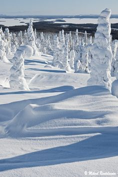 Riisitunturi, Posio Snowy Pictures, Nature Pictures, Cool Pictures, Winter Magic, Winter Snow, Winter Time, Lapland Finland, Lappland, Landscape Pictures