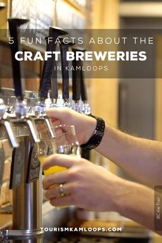 Inspired names, secret sourdough, and meaningful murals are just some of the fun facts hiding behind the scenes in these five local craft breweries. Say cheers to reopened tasting rooms and discover five facts about these Kamloops breweries. Cider Making, Home Buying Tips, Shop Local, Tasting Room, Unique Recipes, Craft Beer, Brewery, Murals, Cheers