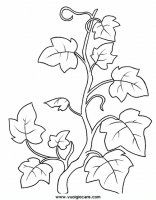 Pattern Coloring Pages, Bible Coloring Pages, Flower Coloring Pages, Leaf Coloring, Adult Coloring Pages, Coloring Sheets, Leaf Template, Flower Template, Vine And Branches