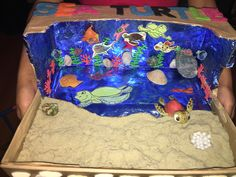 Giselles sea turtle diorama!! Kinder project !!!