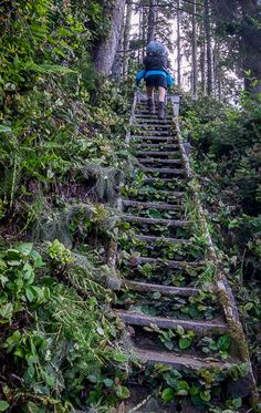 Hiking the Juan de Fuca Trail on the west coast of Vancouver Island Beautiful Places To Visit, Places To See, Sunshine Coast Bc, Stairs To Heaven, West Coast Trail, Maui Vacation, Island Life, Big Island, British Columbia