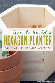 How to Build Geometric DIY Wooden Planters for an Indoor Garden