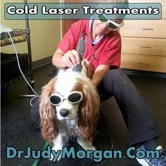 how to become a cold laser therapist
