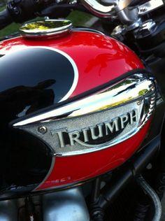 Triumph : Bonneville T100
