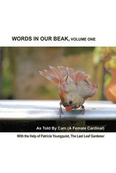 """Just in time for the gift giving season! A hardcover version of """"Words In Our Beak Volume One.""""  Please see my press release! http://mailchi.mp/7261ab381c99/words-in-our-beak-volume-one-now-available-in-hardcover-edition-2578157?e="""