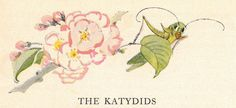 The Katydids, Janet Laura Scott