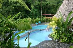 Lost Iguana Resort & Spa (Costa Rica/La Fortuna de San Carlos) - New Reviews & Best Rates