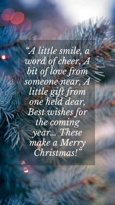 Christian Merry Christmas Messages Quotes to friends holidays cards for Xmas tree lights sms for everyone. #merrychristmasmessagesquotes #merrychristmasmessagesfriends #merrychristmasmessagesfamilies Merry Christmas Quotes Jesus, Christmas Messages Quotes, Merry Christmas Wishes Text, Inspirational Christmas Message, Merry Christmas Funny, Christmas Humor, Jesus Sayings, Funny Sayings, Funny Humor