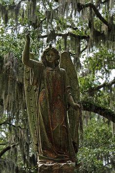 Cemetery Angel in a swamp.